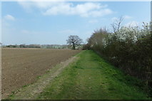 TM3569 : Lovers Lane Footpath to Pouys Street by Geographer