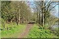 NX9777 : Burns' Walk, Dumfries by Billy McCrorie