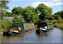 SK0120 : Narrowboats west of Bishton in Staffordshire by Roger  Kidd