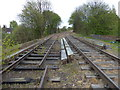 SO9591 : Disused railway line in Tipton by Mat Fascione