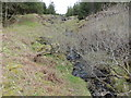 NM4420 : Allt Cnoc na Feainnaige in Scoor Forest by John Ferguson