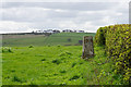 NZ0861 : Trig point near High Mickley by Bill Boaden