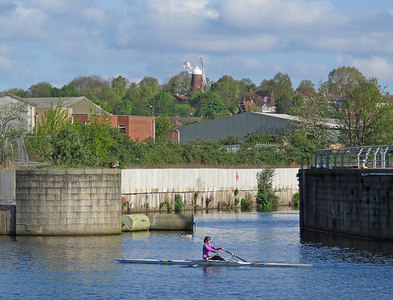SK5838 : Sculling past Trent Basin by John Sutton