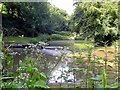 TQ8410 : Lake in Fishponds Gill, upper Ecclesbourne Valley by Patrick Roper