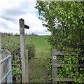 SK5030 : Footpath to Thrumpton by David Lally