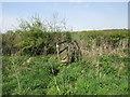 SP6440 : Footbridge near Castle Farm by Jonathan Thacker