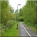 SK5350 : Cycle and foot path by David Lally