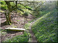 SE1025 : Path junction and bridge in Cunnery Wood Nature Reserve, Halifax by Humphrey Bolton