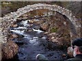 NH9022 : Old Pack Horse Bridge at Carrbridge by David Dixon