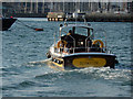 SX4853 : 'Copper' on the Mount Batten Ferry by Stephen McKay