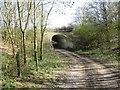 SU4983 : Under the A34 by Bill Nicholls