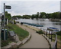 TQ1568 : Thames Path, East Molesey by Jaggery