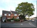 SP3383 : Houses, Alder Meadow Close by Niki Walton
