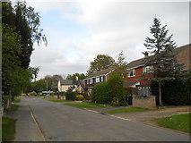 TF1505 : Welmore Road, Glinton by Paul Bryan
