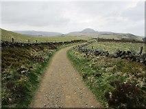 NO2306 : Path to West Lomond by Bill Kasman