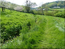 SY1988 : Branscombe, path between  Manor Mill and the Bakery by Chris Gunns