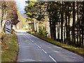 NH8923 : A938 Approaching Carrbridge by David Dixon