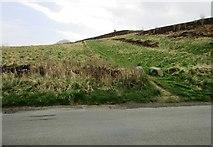 NO2206 : Path near Craigmead car park, Lomond hills by Bill Kasman
