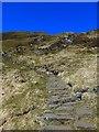 NN9563 : Steps on the Ben Vrackie path by Gordon Brown