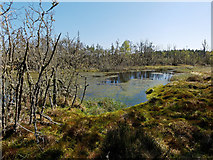 NH5853 : Unnamed lochan on the edge of Monadh Mor by Julian Paren