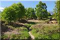 SK0111 : Hednesford Hills by Stephen McKay