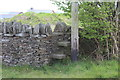 ST1693 : Stone steps in wall, Fyynon-y-gwaed by M J Roscoe