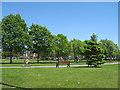 SJ4792 : Henley Memorial Park by Sue Adair