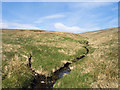 NY4809 : Confluence on Great Grain Gill by Trevor Littlewood