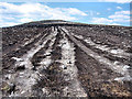 S6939 : Erosion and Burned Heather by kevin higgins