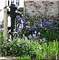 TG1800 : Water pump in front garden by Evelyn Simak