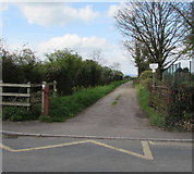 ST2938 : Chilton Moor Lane, Bridgwater by Jaggery