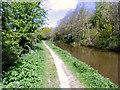 SJ9170 : Towpath northwards by Anthony O'Neil