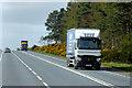NH9656 : Goods Vehicles passing Hardmuir Wood by David Dixon