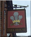 TG1001 : Sign for the Feathers public house, Wymondham by JThomas