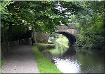 SE0424 : The Rochdale Canal in Friendly #2 by Bobby Clegg