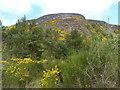 NH7798 : The Mound Rock by James Allan