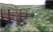 NO2204 : Footbridge over Lothrie Burn, Lomond Hills by Bill Kasman