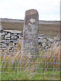 SE1253 : Boundary Stone by John Illingworth