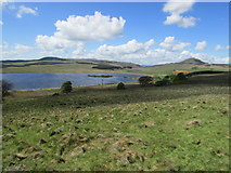 NO2205 : Ballo Reservoir, Lomond Hills by Bill Kasman