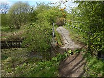 NS3977 : Footbridge over the Murroch Burn by Lairich Rig