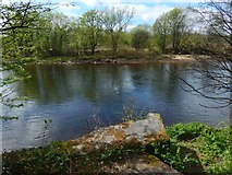 NS3977 : The River Leven at Kilmalid by Lairich Rig