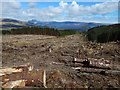 NS3483 : Cleared forestry land by Lairich Rig
