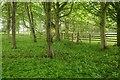 NT4983 : Orienteering control flag, Archerfield by Richard Webb