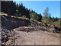NS3383 : Small quarry beside a forestry track by Lairich Rig