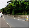 SY1287 : Station Road narrows ahead, Sidmouth by Jaggery