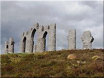 NH6069 : Fyrish Monument by Julian Paren