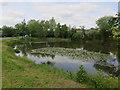TL3769 : Sandpit Pond, Over by Hugh Venables