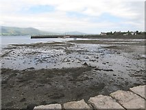 J1811 : Carlingford Harbour at Low Water by Eric Jones