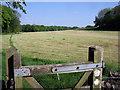 SK0871 : Midshires Way by Stephen Burton