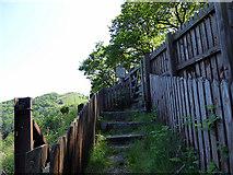 SN7377 : Steps leading to the Tynycastell foot crossing, Vale of Rheidol Railway by John Lucas